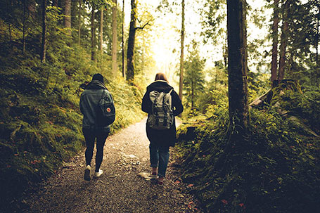 Two people walk in the woods, Credit: Pexels 591216